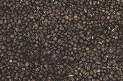 How Coffee Beans are Graded