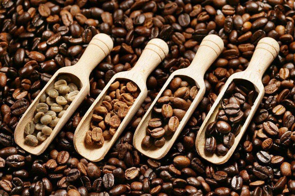 Coffee Roasting 101 | Roasting Types