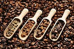 Coffee Roasting Types