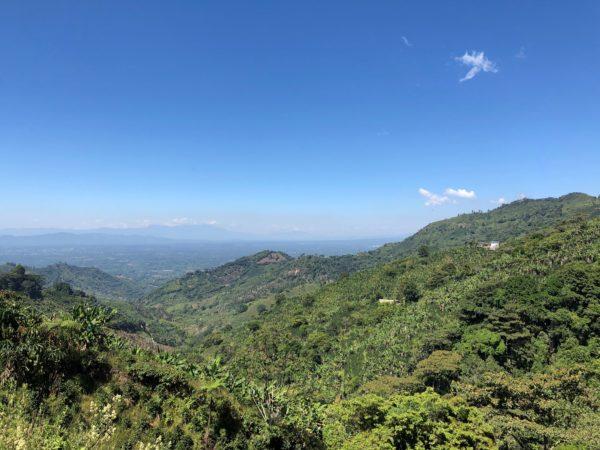 Finca Villa Betulia, Colombia