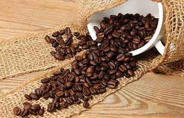 Arabica vs Robusta Coffee Beans – What's the Difference?